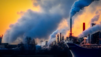 Photo of تبدیل آلایندهها به محصولات مفید